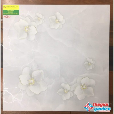 Gạch thạch anh 60x60 hoa 5D cao cấp