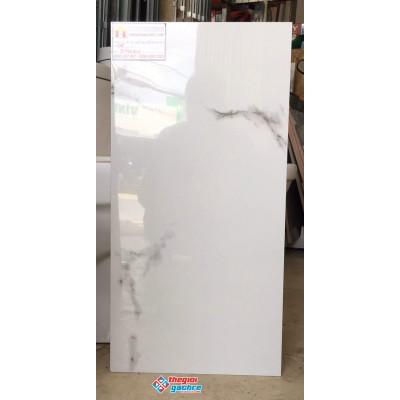 Gạch bóng kiếng ốp lát 30x60