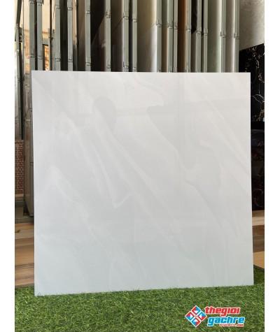 Gạch bóng kiếng 60x60 giá rẻ cần giuộc