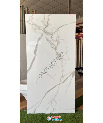 Gạch bóng kính khổ lớn 60x120 cao cấp giá rẻ hậu giang