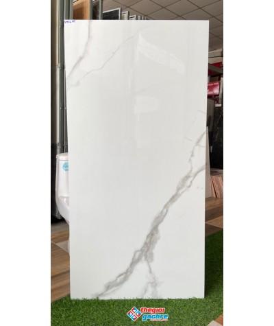 Gạch ấn độ 60x120 trắng bóng kiếng